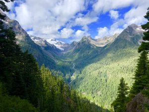 Backpacking the Hoh River Trail