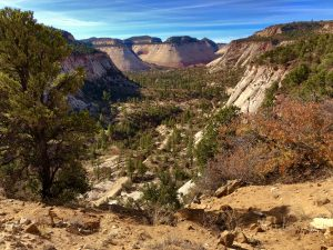 Read more about the article Zion National Park – East Rim Trail