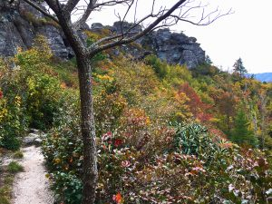 Read more about the article Hiking the Shortoff Mountain Trail