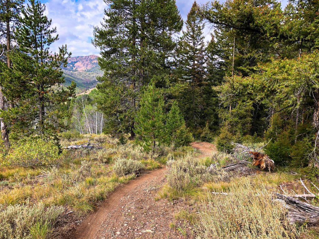 Galena Lodge Mountain Bike Trails