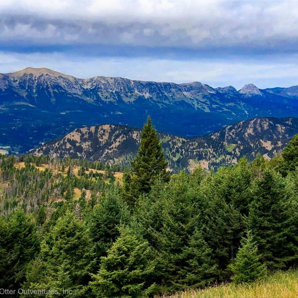 Mountain Biking the Bangtail Divide Trail, Bozeman, Montana