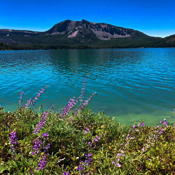 Paulina Lake Loop Hike