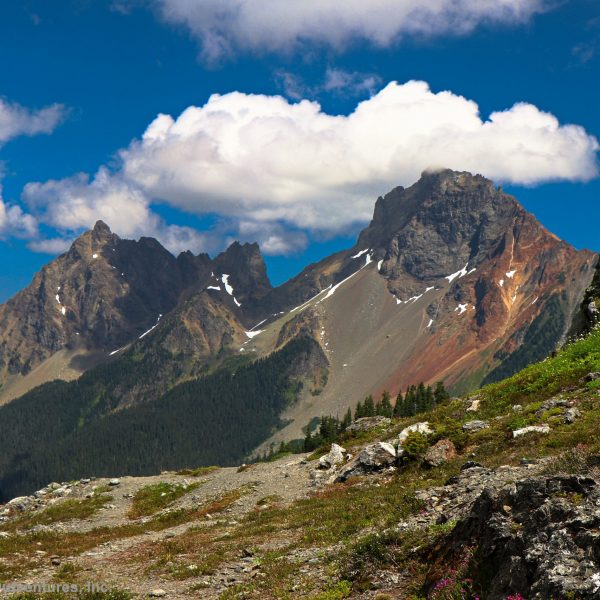 Hiking to Yellow Aster Butte