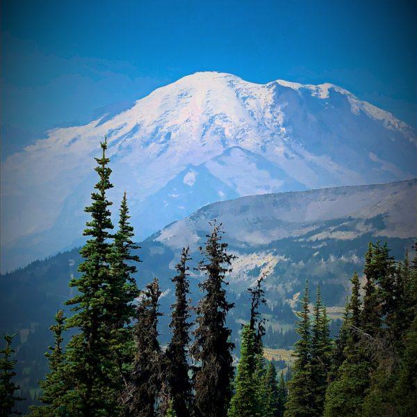 Mount Rainier Hiking The Burroughs Mountain Loop