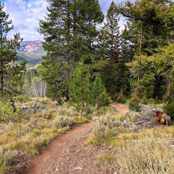 Galena Lodge Mountain Bike Trails