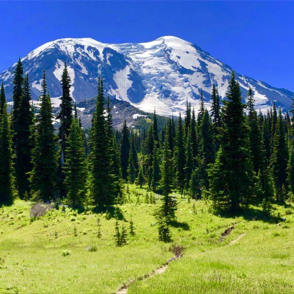 Hiking Killen Creek Trail to High Camp, Mount Adams
