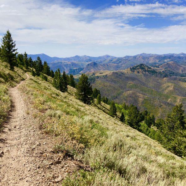 Sun Valley Mountain Biking