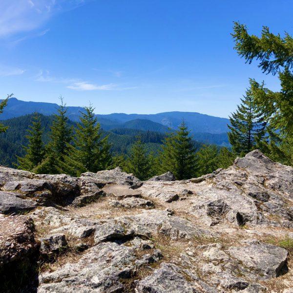Larison Rock Mountain Biking Trail, Oakridge, Oregon