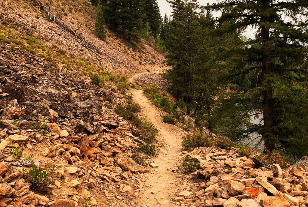 North of Ketchum Mountain Biking Trails, Ketchum, Idaho